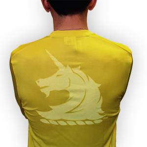 2015 Boston Marathon Race Shirt